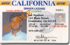 California Driver License